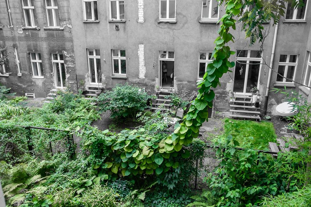Hinterhof + grün